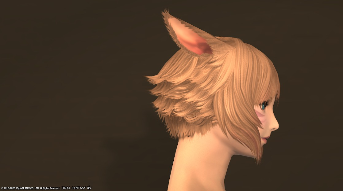 サイオンズヒーラー髪型サイド