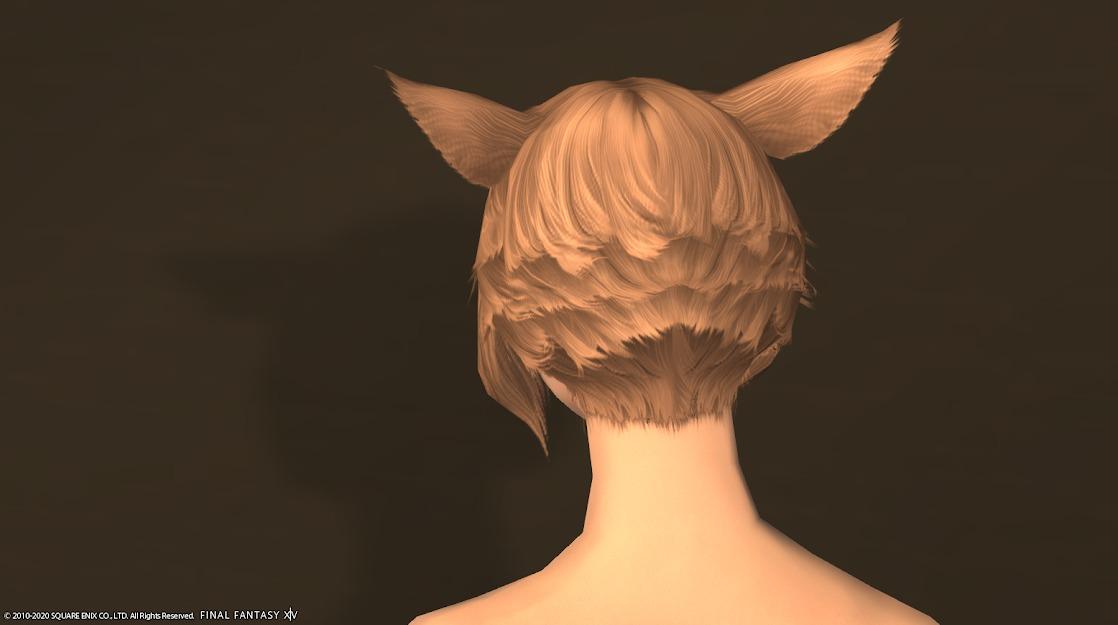 サイオンズヒーラー髪型背面