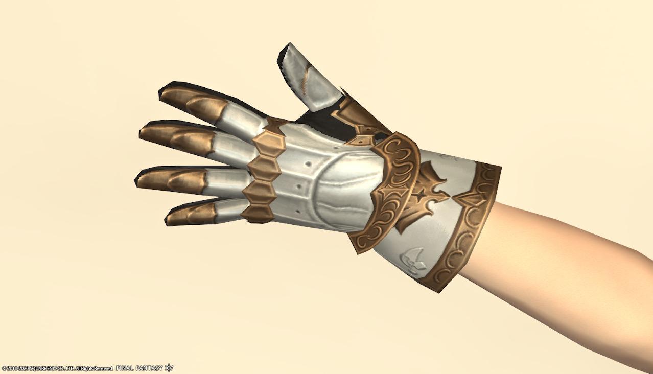 アイディアルシュヴァリエ左手