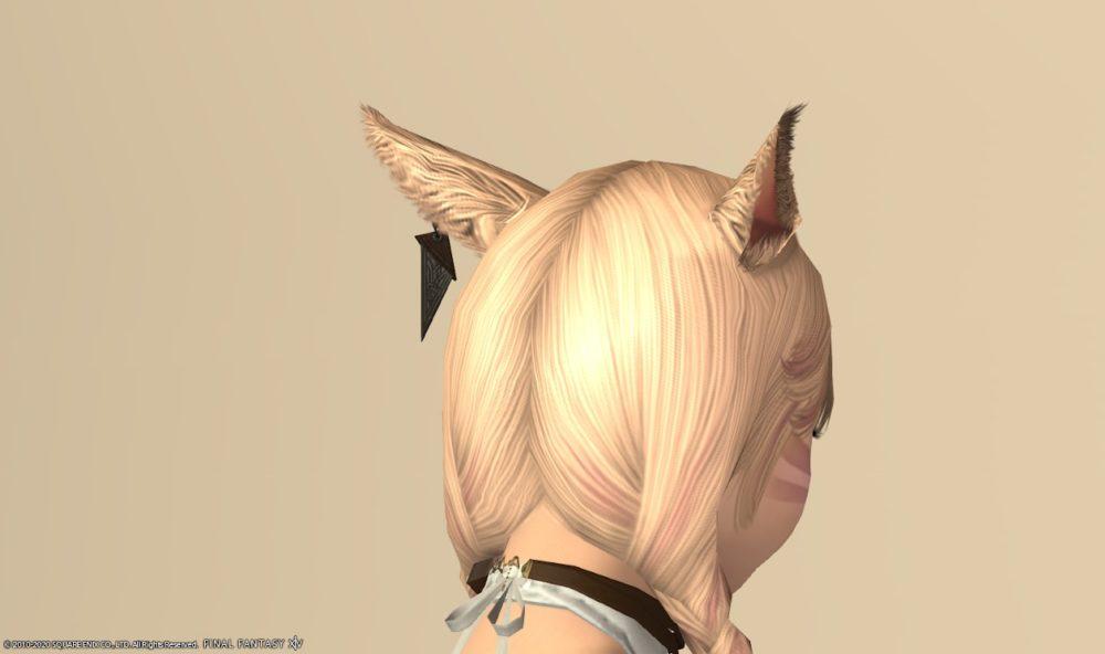 アトロシラプトル耳背面